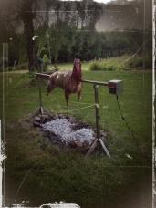 15 lamm grill