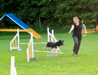 kite louise agility